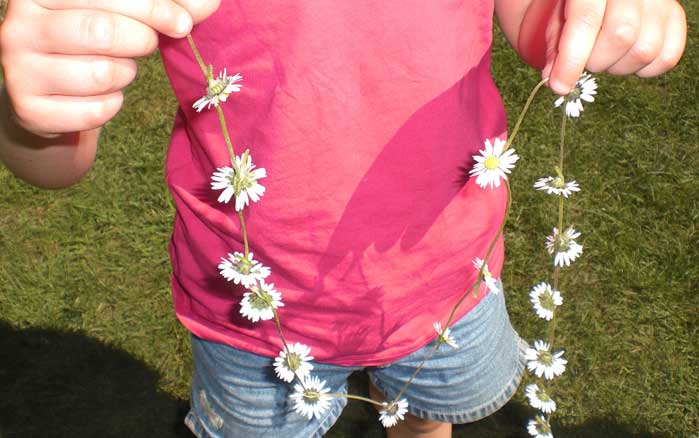 a daisy chain, childhood at its best
